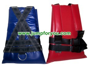 Bungee Run Harness