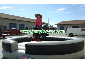 Mechanical Bull Rental Los Angeles