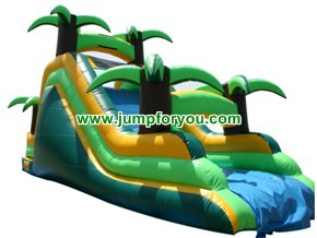 S116a Tobogan Inflable Tropical