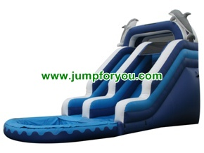 WS152b 23FT Dolphins Inflatable Water Slide