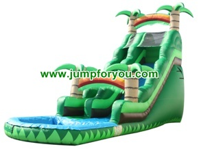 WS169a Inflatable Water Slide