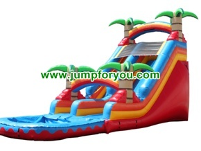 WS206 Tropical Inflatable Water Slide