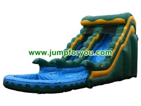 WS256 Green Giant Inflatable Water Slide