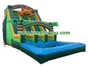 WS438 Sunshine Double Inflatable Water Slide