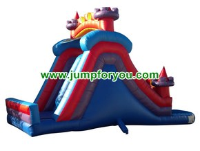 WS995 Inflatable Castle Water Slide