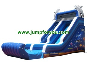 Giant Dolphins Inflatable Dry Slide